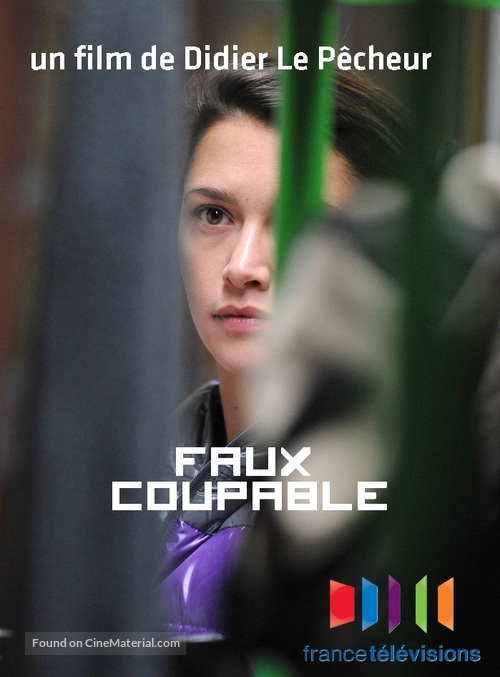Faux coupable - French Movie Cover