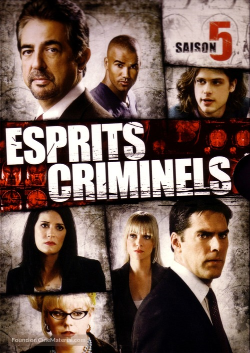 """Criminal Minds"" - French DVD movie cover"
