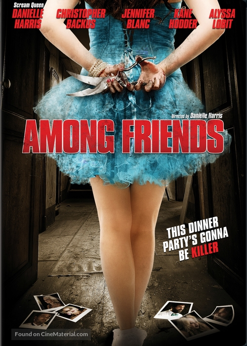 Among Friends - DVD movie cover