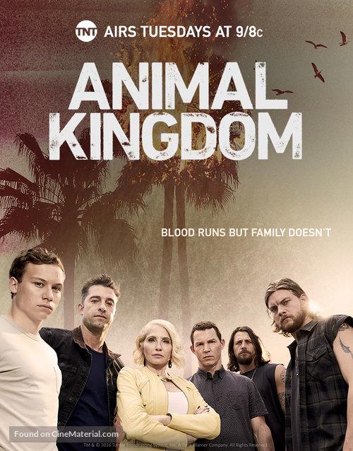 """Animal Kingdom"" - Movie Cover"