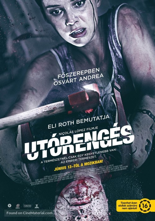 Aftershock - Hungarian Movie Poster