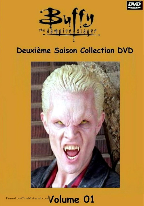 """Buffy the Vampire Slayer"" - French DVD movie cover"