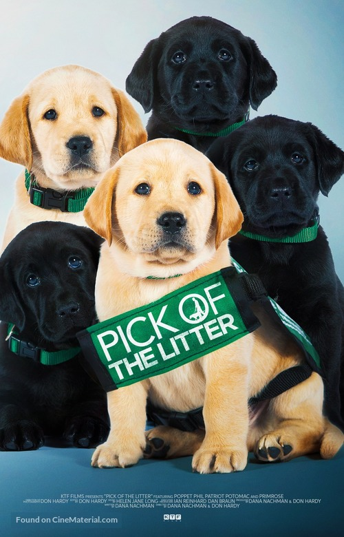 Pick of the Litter - Movie Poster