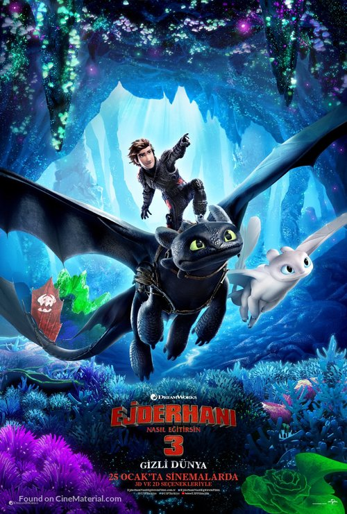 How to Train Your Dragon: The Hidden World - Turkish Movie Poster