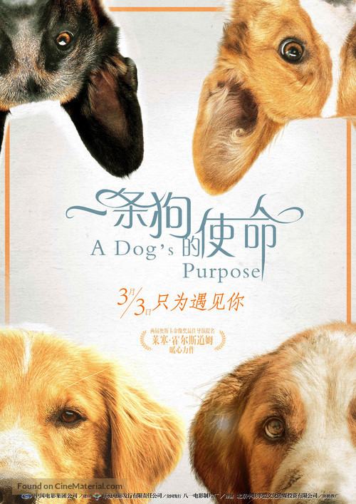 A Dog S Purpose Movie Download