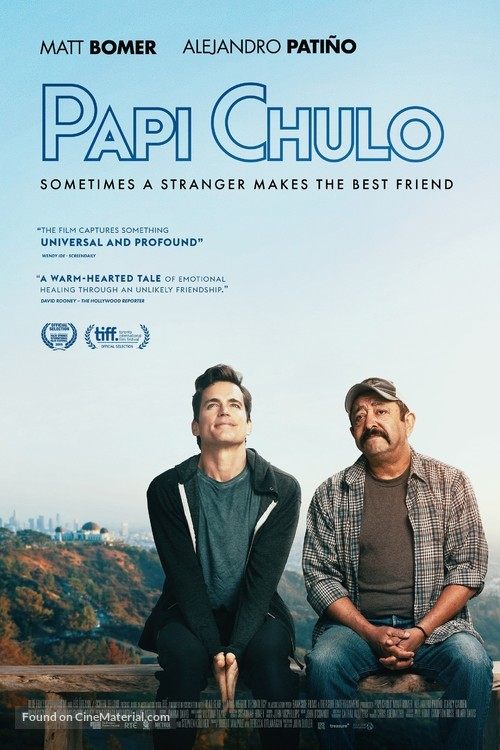 Papi Chulo - Irish Movie Poster