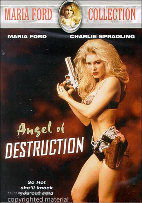 Angel of Destruction - DVD movie cover