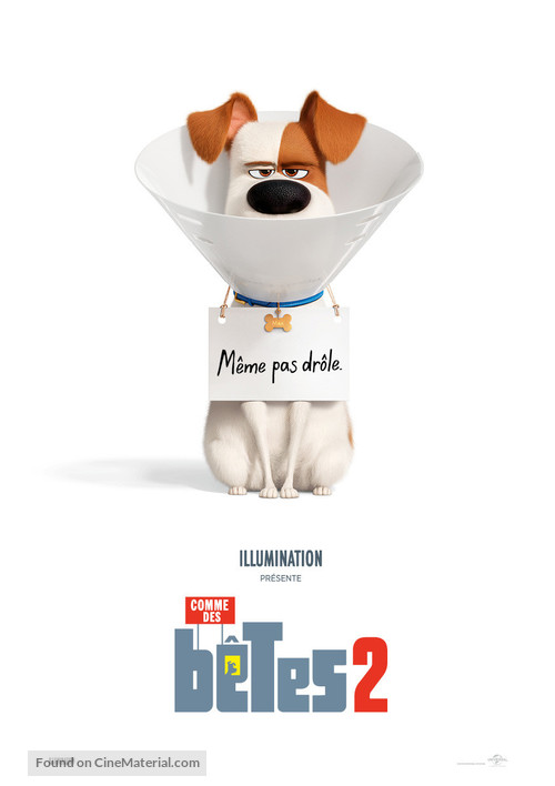 The Secret Life of Pets 2 - Swiss Movie Poster
