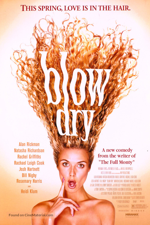 Blow Dry - Movie Poster