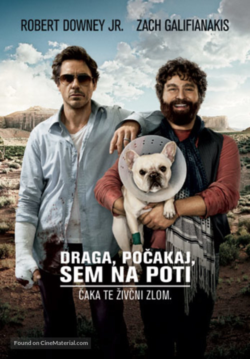 Due Date - Slovenian Movie Poster