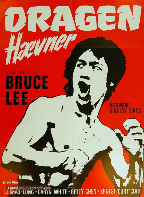 Li Hsiao Lung chuan chi - Danish Movie Poster