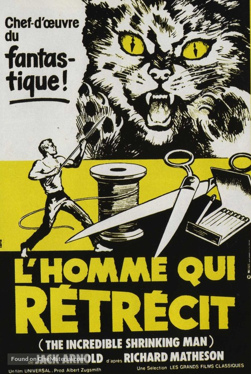 The Incredible Shrinking Man - French Movie Poster