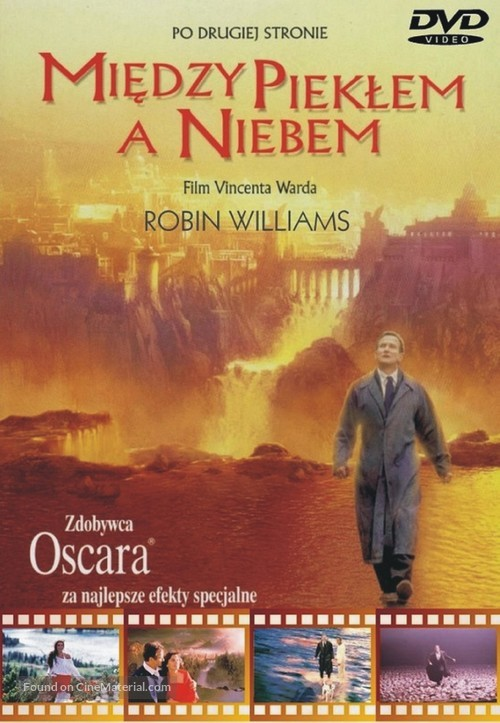 What Dreams May Come - Polish Movie Cover