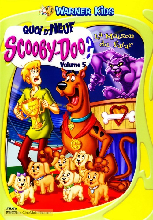What S New Scooby Doo 2002 French Dvd Movie Cover