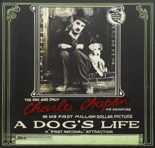 A Dog's Life - poster