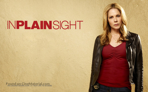 """In Plain Sight"" - Movie Poster"