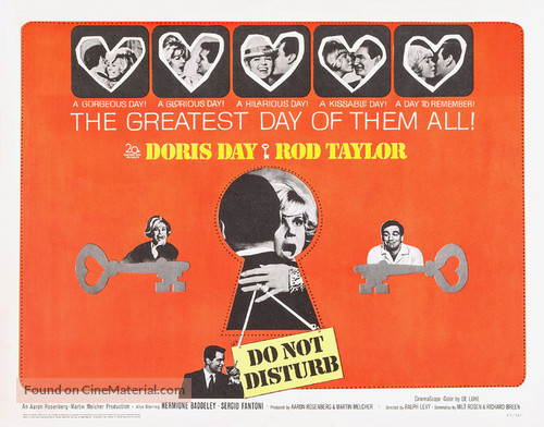Do Not Disturb - Movie Poster