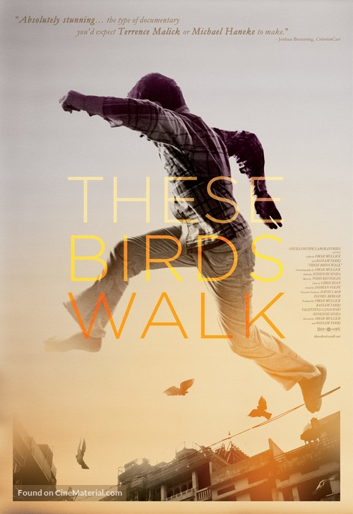 These Birds Walk - Movie Poster