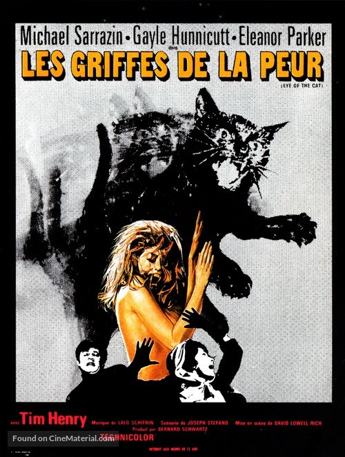 Eye of the Cat - French Movie Poster