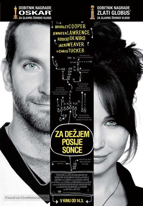 Silver Linings Playbook - Slovenian Movie Poster
