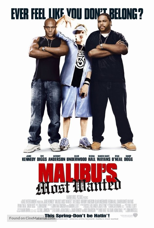 Malibu's Most Wanted - Movie Poster