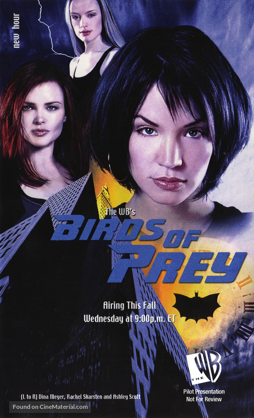 """Birds of Prey"" - Movie Poster"