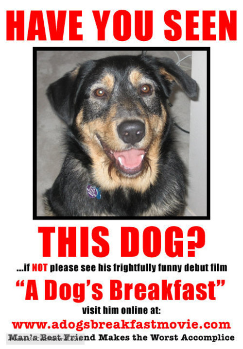 A Dog's Breakfast - Movie Poster