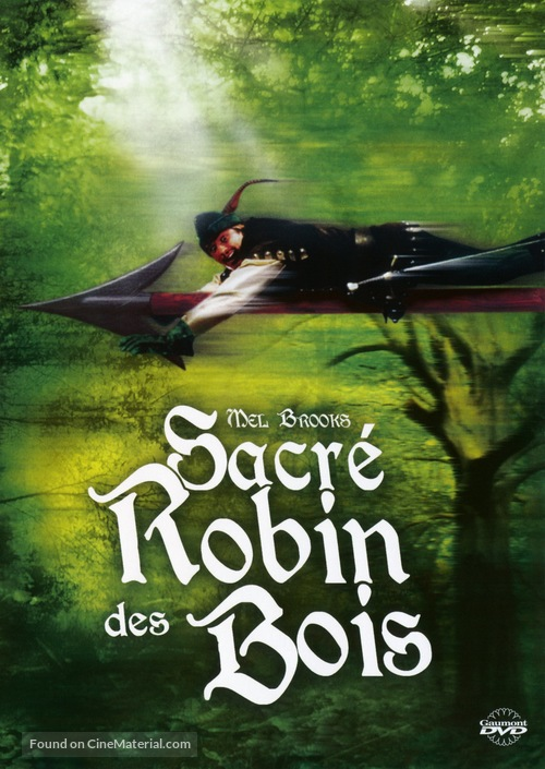 Robin Hood: Men in Tights - French Movie Cover