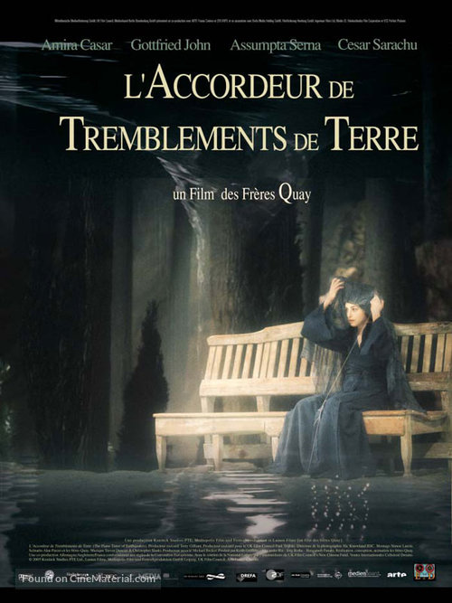 The Piano Tuner of Earthquakes - French poster