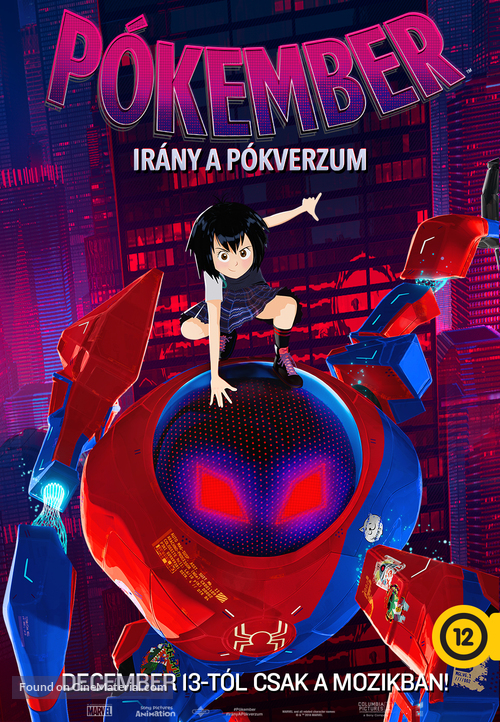 Spider-Man: Into the Spider-Verse - Hungarian Movie Poster