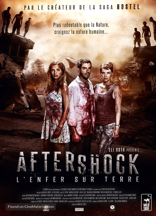 Aftershock - French DVD movie cover