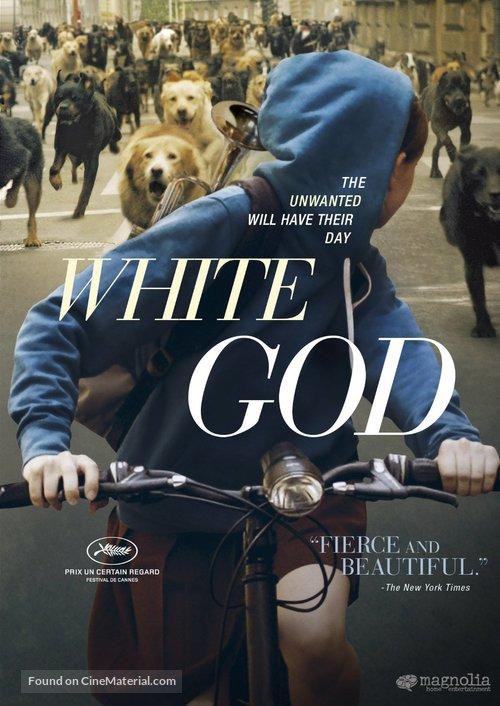 Fehér isten - DVD movie cover