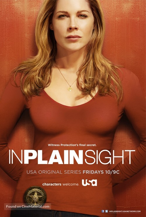 """""""In Plain Sight"""" - Movie Poster"""