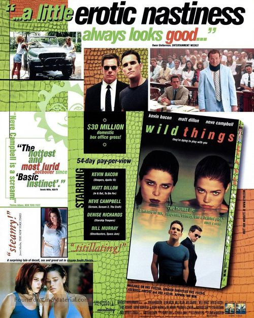 Wild Things - Video release movie poster