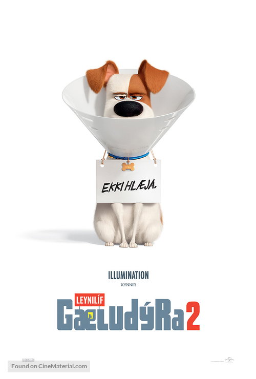 The Secret Life of Pets 2 - Icelandic Movie Poster
